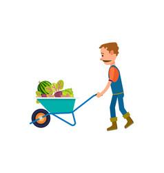 farmer with full of vegetables wheelbarrow icon vector image vector image