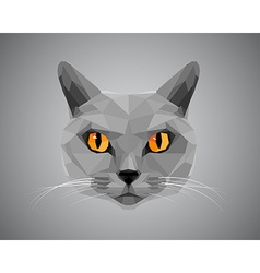 Grey cat with orange eyes - polygonal style vector
