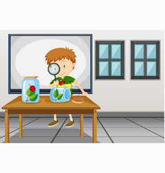 boy looking at ladybug in classroom vector image