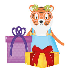 cute tiger with gift box in party celebration vector image