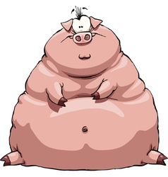 fat pig vector image