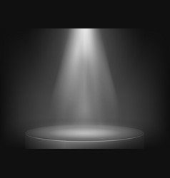 Scene illuminated spotlight show spotlight vector