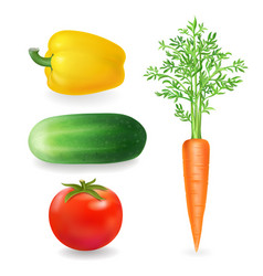 Vegetables realistic tomato peppers carrot vector