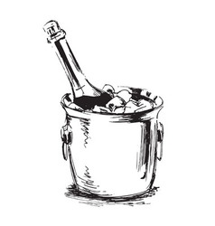 hand sketch champagne vector image vector image