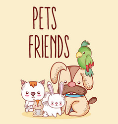 pets friends cartoon vector image