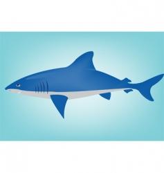 shark in ocean vector image vector image