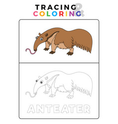 Animal tracing and coloring book with example vector