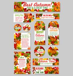 autumn tags acorn leaf pumpkin greeting vector image