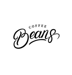 coffee beans hand written lettering logo vector image