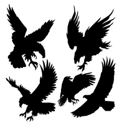 Eagle silhouette attack hunt sky set 2 vector
