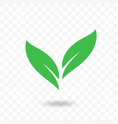 green leaf vegan bio or eco icon vector image