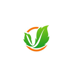 leaf ecology green nature logo vector image