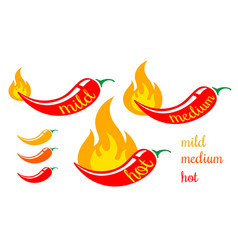 mild medium and hot chilli pepper vector image