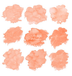 Orange watercolor set on white background vector
