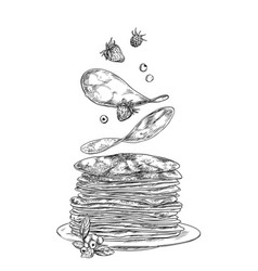 pancakes and berries falling on stack vector image
