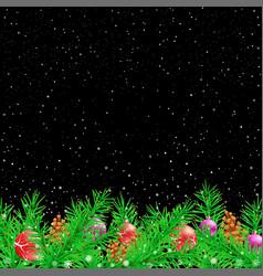 spruce christmas black night background vector image