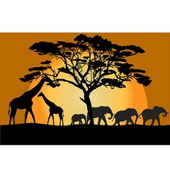 Savannah landscape with animals vector image