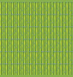 Bamboo stems design vector
