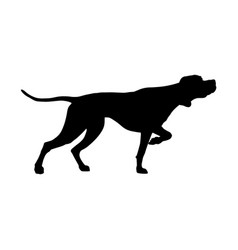 english pointer silhouette vector image