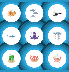 flat icon sea set of tuna medusa shark and other vector image