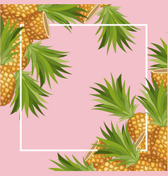 fresh pineapple fruit tropical frame vector image