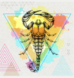 hipster realistic scorpion on artistic background vector image