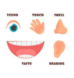 Human senses cartoon icons with eye nose vector