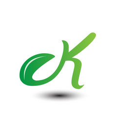 k green leaves letter ecology logo vector image