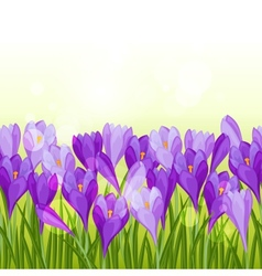 Spring flowers crocus seamless pattern horizontal vector image