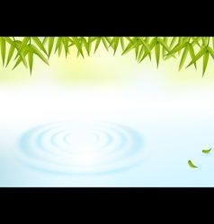 water and bamboo leaves background vector image