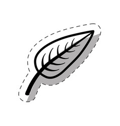 leaf biology plant monochrome vector image