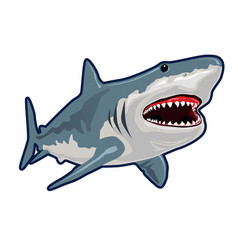 Blue shark realistic cartoon vector