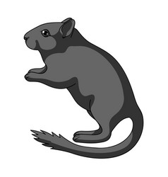 Gray gerbilanimals single icon in monochrome vector
