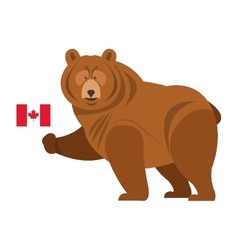 grizzly beare with canadian flag icon vector image