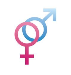 heterosexual gender symbol sexual orientation vector image