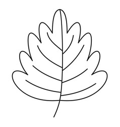 Leaf icon outline style vector
