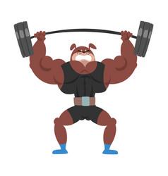 Powerful dog lifting barbell animal athlete vector
