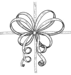ribbon wrapping with tied bow hand drawn sketch vector image