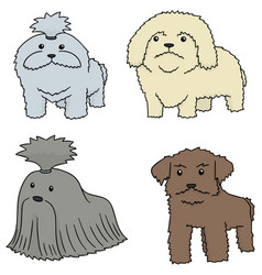 Set of dog shih tzu vector