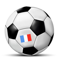 soccer ball with france flag vector image