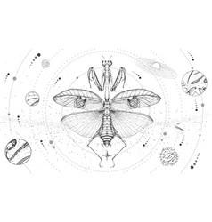 Solar system and praying mantis vector