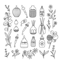 Aromatherapy aesthetic with different oil bottles vector