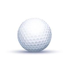 classic golf ball vector image
