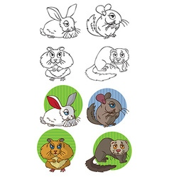 Pets rodents vector