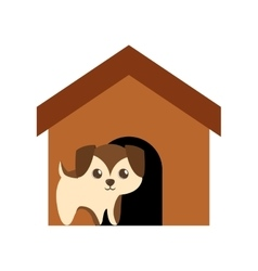 puppy adorable pedigree brown house vector image