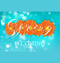spring lettering design logo decorative vector image