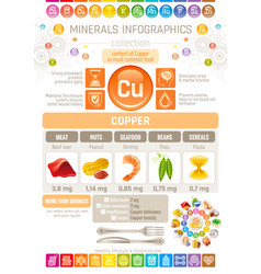 copper mineral supplements rich food icons vector image vector image