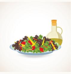 fresh vegetable and green leaf salad dish vector image