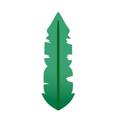 Botanic tropical leaf natural style vector