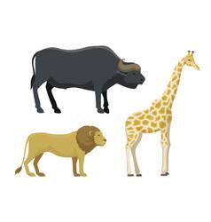 cute cartoon safari animals vector image